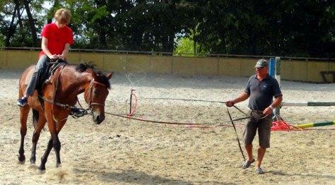 Конная база Виница, конный спорт, Варна, varnaru.me