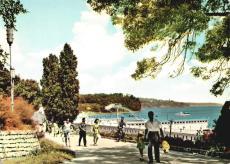 Морската градина. 1960 г.